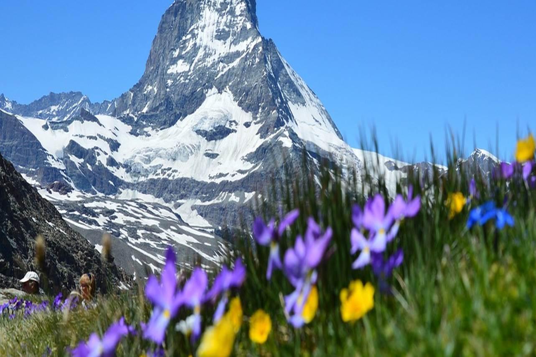 Schweiz_