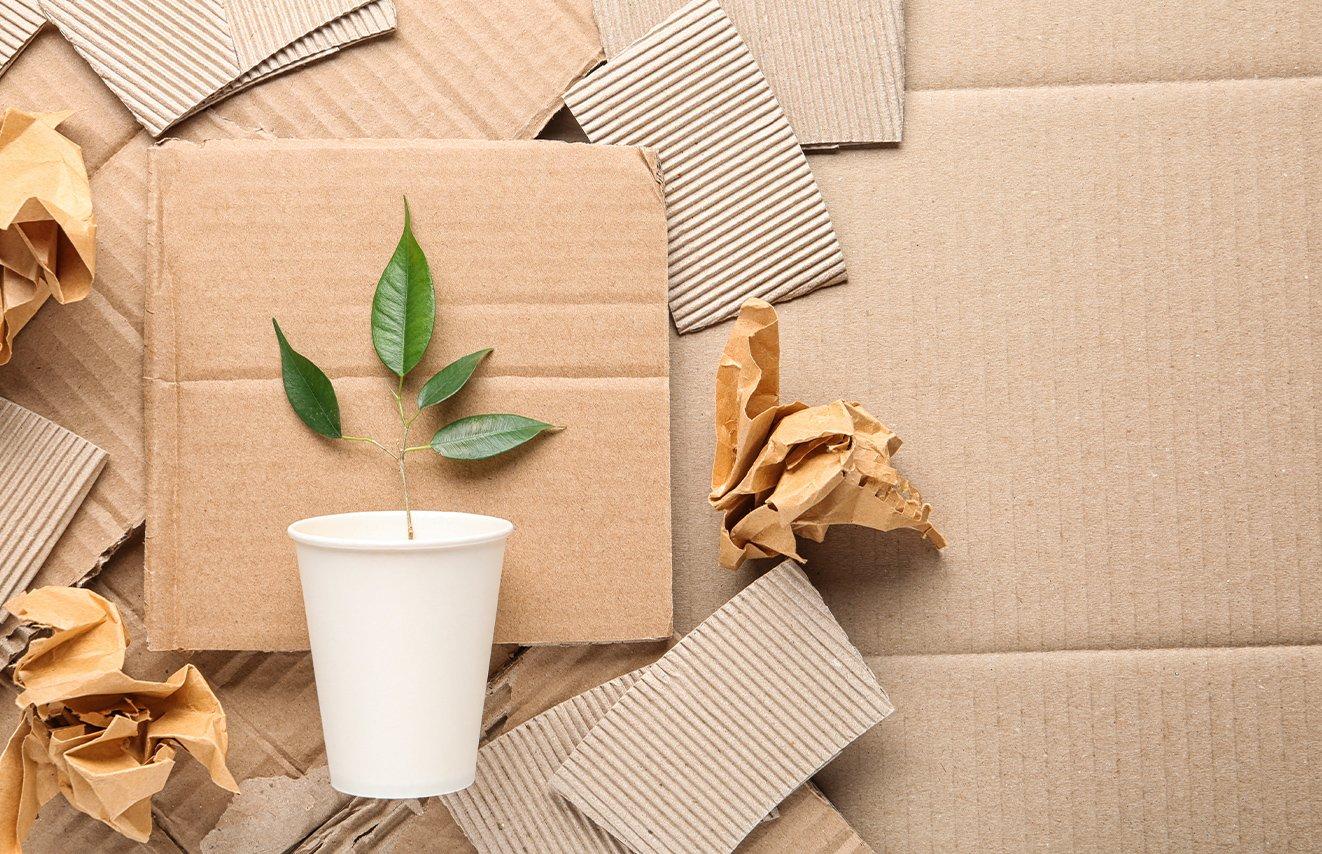 LP-Verpackungstipps